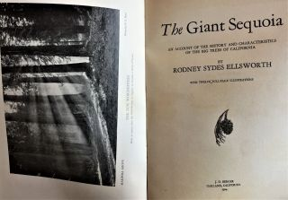 The Giant Sequoia, An Account of the History and Characteristics of the Big Trees of California